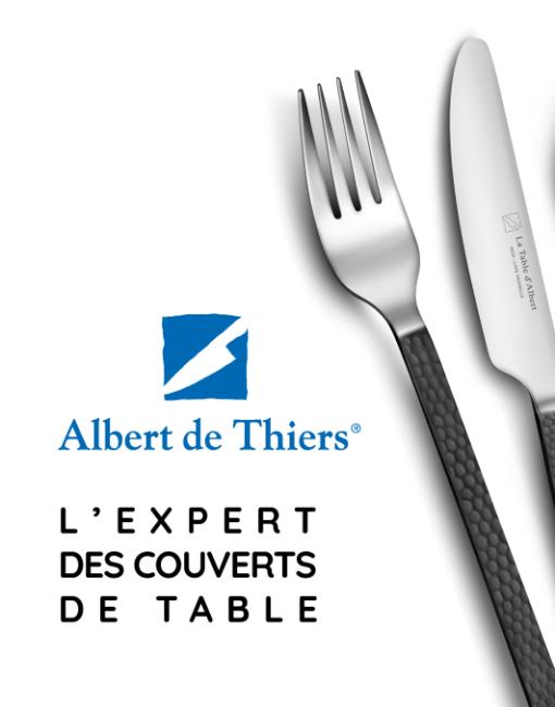 Albert de Thiers